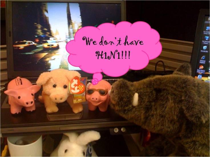 desk-pigs